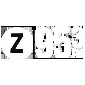 Z95.3 FM